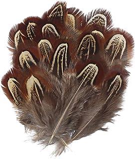 30-35cm Plumas de fais/án ERGEOB/® Las Plumas 12-14 Pulgadas Plumas de la Cola de Longitud fais/án 10,30,50 Pieza