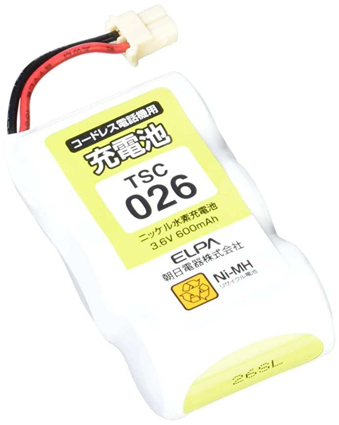 禁じるスポーツをする眠るELPA エルパ 朝日電器 電話機用充電池 TSC-026