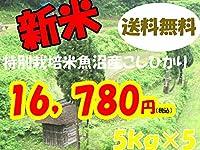 平成28年新潟県産特定産地米 (魚沼産特別栽培米5㎏×5)