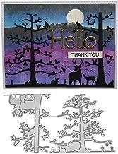HIKO23 Cutting Dies Stencil Metal Mould Template for DIY Scrapbook Album Paper Card Making (Lace Flower Cutting Dies)