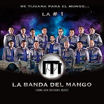 L a # 1 de Tijuana Para el Mundo