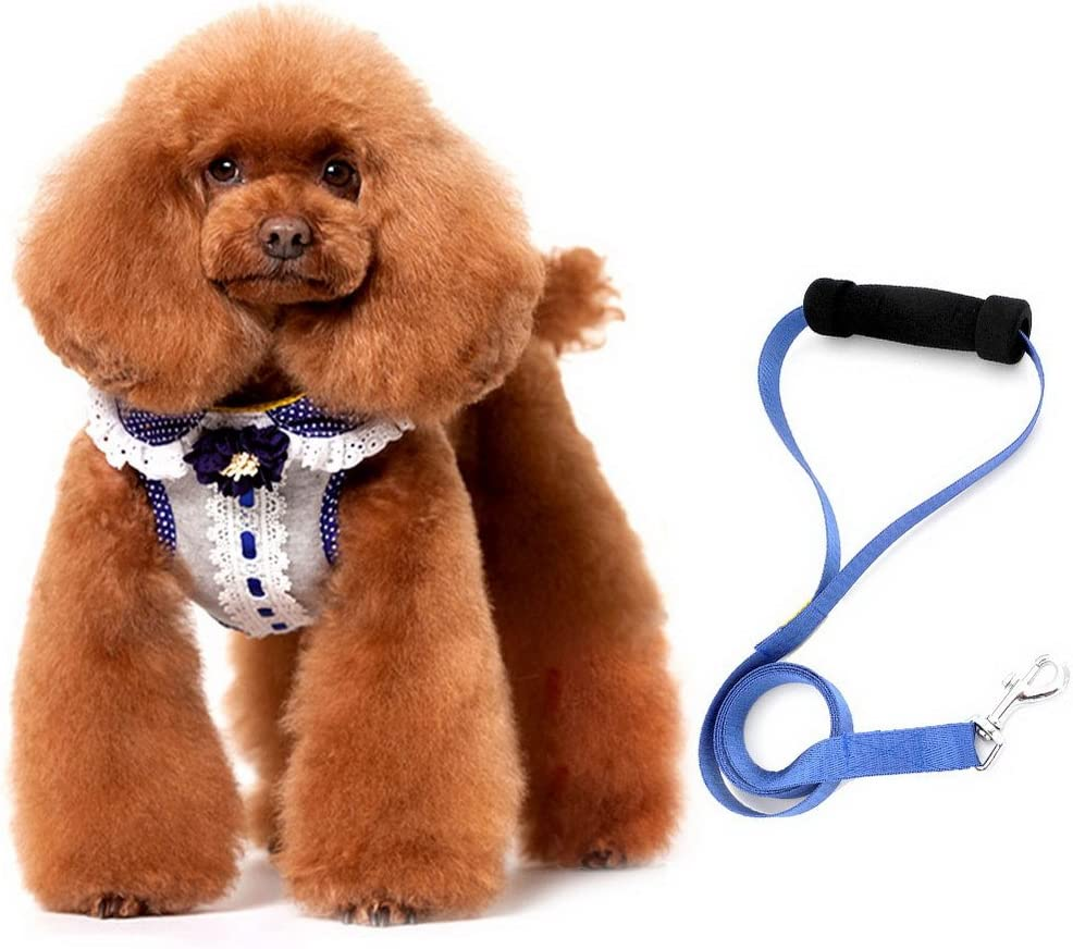 SMALLLEE_LUCKY_STORE Pet Stylish Adjustable Lowest price challenge S Harness Vest Leash All items free shipping