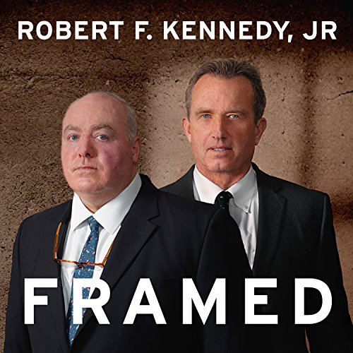 Framed audiobook cover art