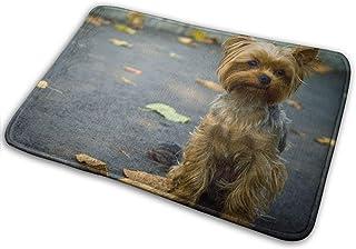 Alfombra de baño, felpudo de bienvenida, Alfombra de alfombra para el piso de la entrada Alfombra de la puerta delantera exterior con respaldo de goma antideslizante, tapetes de impresión con perreras