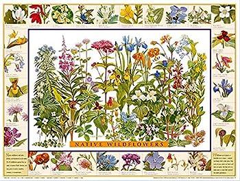 Best flower identification chart Reviews