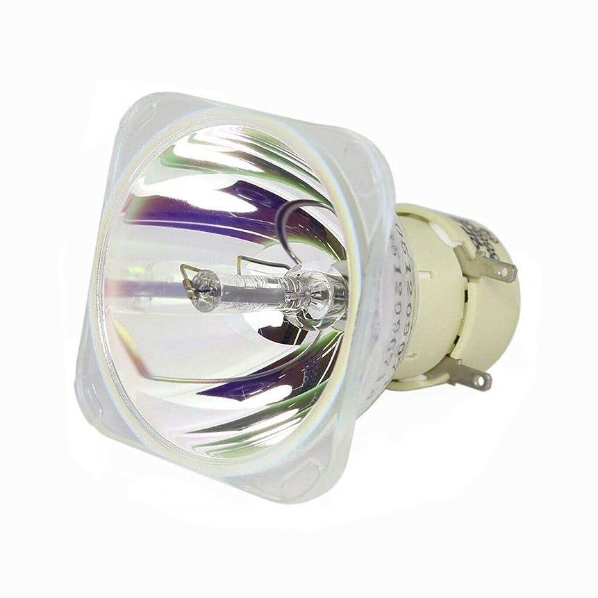 遺産主観的舗装Rich Lighting プロジェクター 交換用 ランプ タイプ3, 308942 RICOH IPSiO PJ WX4130N / WX4130 対応 (高品質裸電球)【180日保証】
