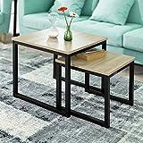 SoBuy® FBT42-N 2er Set Couchtisch Beistelltisch 2-teilig Satztisch Sofatisch Kaffeetisch Tisch-Set - 2