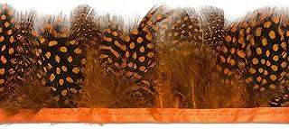 Moonlight Feather | 1 Yard - Orange Guinea Hen Plumage Feather Trim Wholesale Supplier Costume, Craft, Halloween Feathers