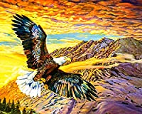 SENWANG ナンバーペイント 大人用 油絵 キャンバスキット 40.64cm x 50.8cm ペイントワーク ブラシ4本 顔料アートクラフト ホームDIY壁装飾用 イーグル