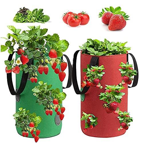 Bolsa para Plantas,2 Piezas Bolsas de Cultivo de Fresa,Bolsa para Plantas Fresas,Bolsa de Siembra de Fresa,Bolsas de Cultivo,Bolsa de Macetas Colgantes,para Fresas,Hierbas,Flores(3Gallon, 20x35CM)