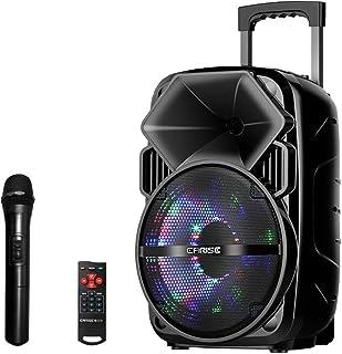 EARISE Bluetooth PA Speaker System with Wireless Microphone, Portable Outdoor Karaoke Machine - Fun Wireless Speaker for P...