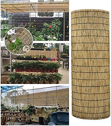 Persianas de rodillo de bambú natural, partición de la partición de la detección decorativa Sombras de ventilación Cerca de privacidad, Patio de jardín Balcón Pérgola Reed Cortina, personalizable 2 3