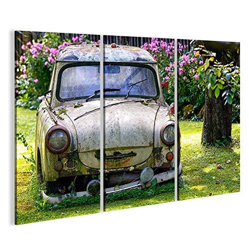 Bild auf Leinwand EIN Alter Trabant in einem Garten Wandbild Poster Leinwandbild