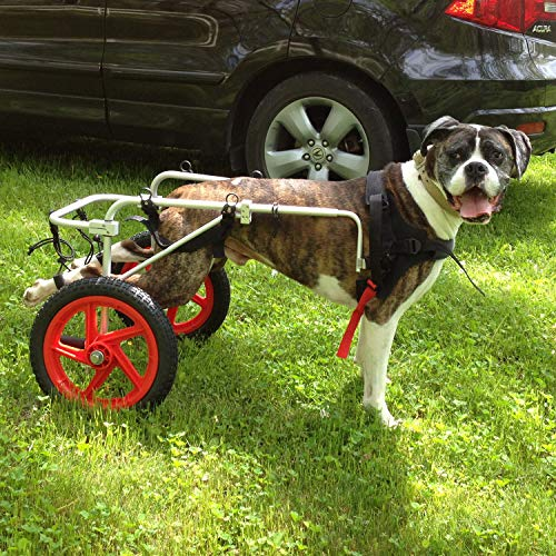 Best Friend Mobility Large Dog Wheelchair
