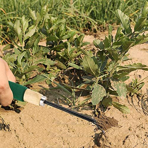 YG_Oline 4 Pack Weeder Tool for Garden, Weed Picker Hand Weeder Weed Puller Hand Tool Dandelion Fork Weed Remover Tools