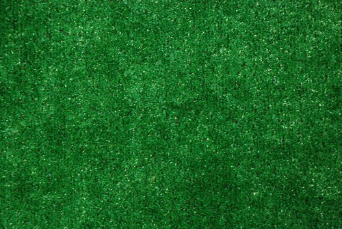D DEAN FLOORING COMPANY, LLC. Indoor/Outdoor Green Artificial Grass Turf Area Rug 6' x 8'