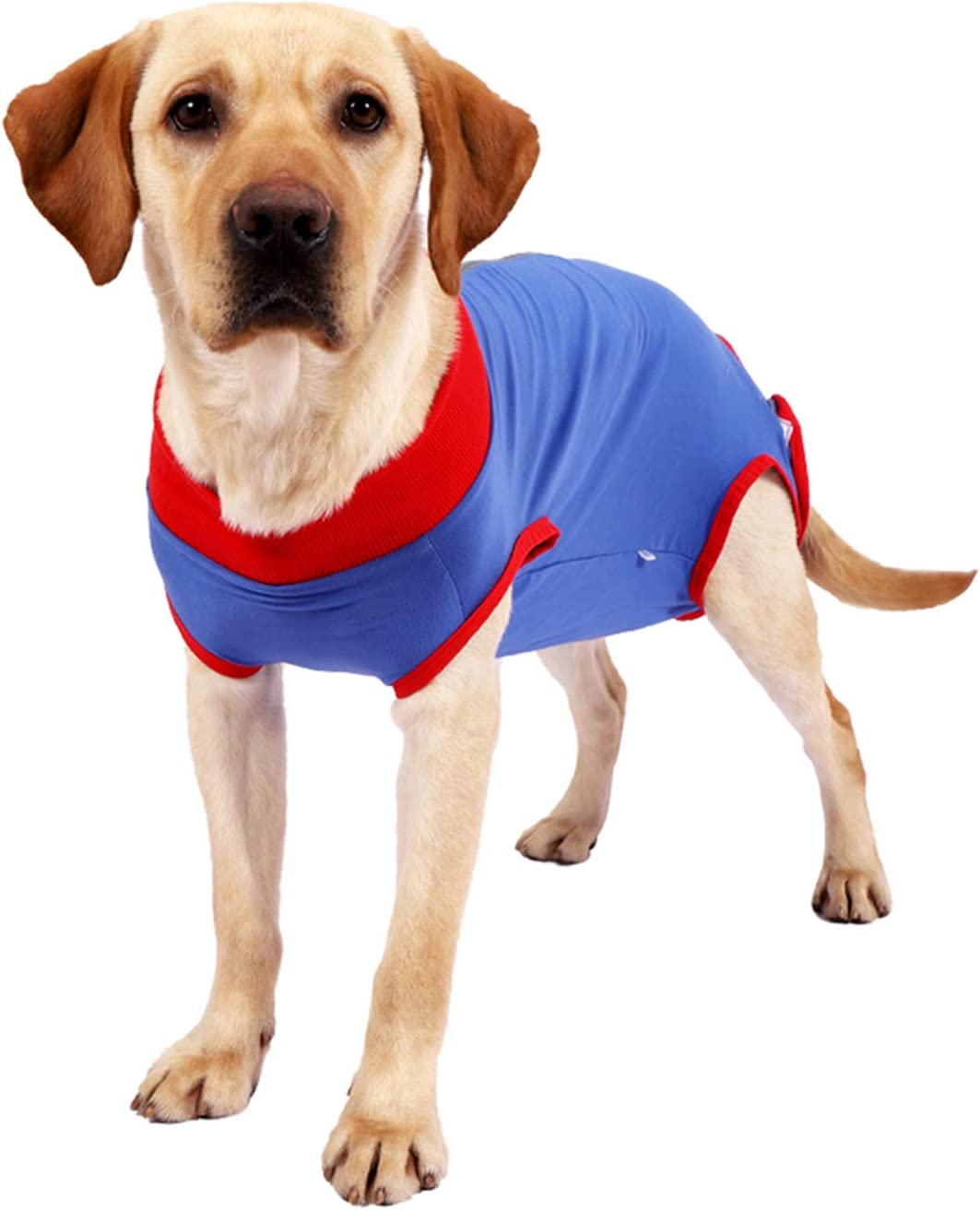 Wooruy Dog Surgical Recovery Suit Abdominal Wound Protector After Surgery Wear E-Collar Alternative for Dogs Zipper Design Home Indoor Pets Clothing