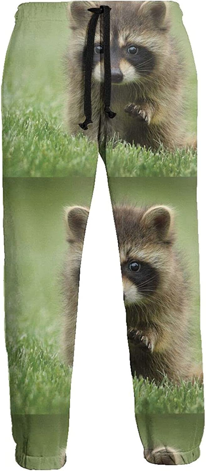 KAWAHATA Cute Fluffy Little Raccoon Men's Pants with Pockets Tapered Athletic Sweatpants 3D Casual Active Sports Pants