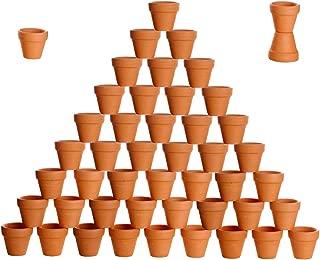 2 inch flower pots bulk