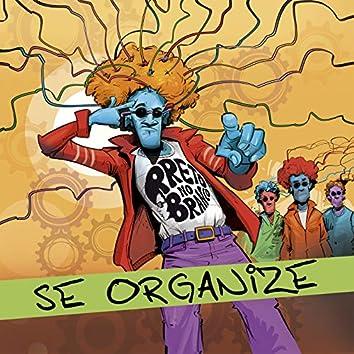 Se Organize