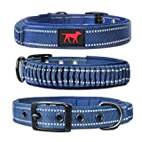 Heavy Duty Dog Collar With Handle | Ballistic Nylon Heavy Duty Collar | Padded...