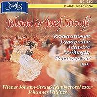 Waltzes, Etc: Wildner / Vienna J.strauss.co
