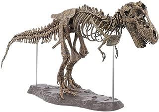 large t rex skeleton model