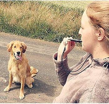 Sifflets pour chiens pourpre de la marque ACME 211,5 avec sangle