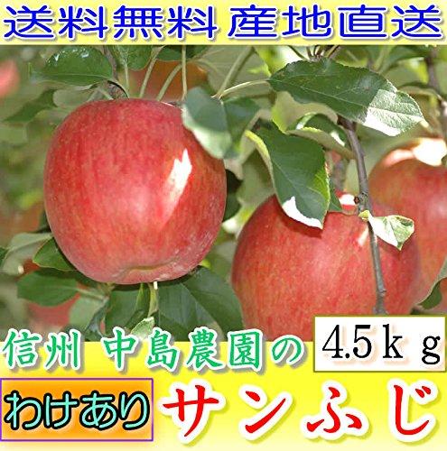 【訳あり】長野産 減農薬 りんご サンふじ 約4.5kg12〜16個入 林檎 リンゴ 産地直送