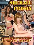 Shemale Prison