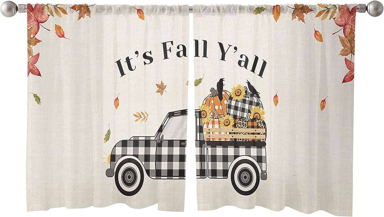 Sheer Window Curtain Panels Max 51% OFF Fall Pumpkin Thanksgiving Free Shipping Cheap Bargain Gift Harvest Fa