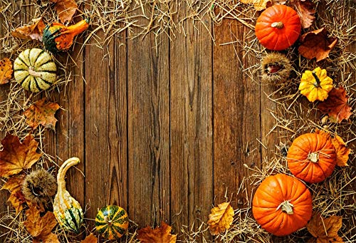 LFEEY 5x3ft Fall Harvest Backdrop Brown Grunge Wood Board Pumpkins Dry Hay Leaves Circled Decoration Thanksgiving Festival Photography Background Vinyl Photo Studio Props