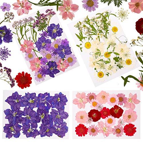Heyu-Lotus - 102 pezzi essiccati, fiori pressati, bricolage misti naturali, fiori secchi per candele, resina, gioielli per unghie, ciondolo arte e artigianato, decorazioni floreali