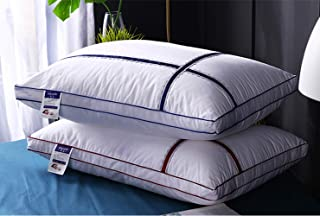 Almohada, soporte suave y cómodo, almohada acolchada de terciopelo con plumas de hotel, lavado hipoalergénico, almohada para el sueño para el cuidado de la salud, paquete de 2, blanco, 48 * 74 cm