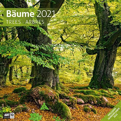 Bäume 2021, Wandkalender / Broschürenkalender im Hochformat (aufgeklappt 30x60 cm) - Geschenk-Kalender mit Monatskalendarium zum Eintragen