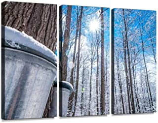 Maple Syrup Collection Buckets. Snow Covered Sugar Shack Woods. Print On Canvas Wall Artwork Modern Photography Home Decor Unique Pattern Stretched and Framed 3 Piece with Frame