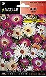 Semillas de Flores - Ficoide Tapiz Mágico - Batlle