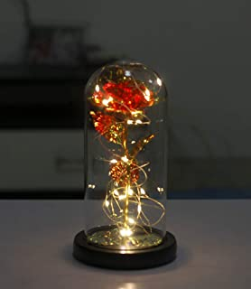 Dream of Flowers Beauty and The Beast Red Rose in Glass Dome on Wood Base, 20 LED Lights Forever Perfect Silk Rose and Gir...