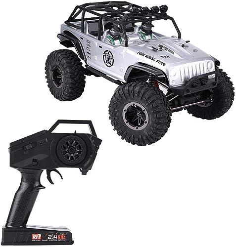 Dilwe RC Crawler Car, Remo 1073-SJ 2,4 GHz 1 10 4 Kan  4WD Brushed Crawler Gel ewagen