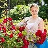 Relaxdays Arco per Rose Rampicanti, HLP 233x153x39 cm, Decorazione Giardino, Sostegno per Piante in Metallo, Verde Scuro #2