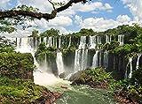 XiuTaiLtd Rompecabezas De Madera Parque Nacional Cataratas del Iguazú Argentina Brasil 1000 Piezas