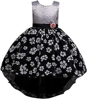 Zhhlaixing Girls Tutu Dress Lace Bridesmaid Dresses Kids Flower Belt Dresses Princess Dress for Pageant Party Prom Wedding Christening