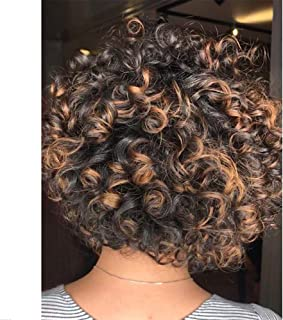 Short Afro Curly Synthetic Hair Wigs for Black Women Phoenixfly Loose Curly Fluffy Shoulder Length Natural Looking Hair Wi...