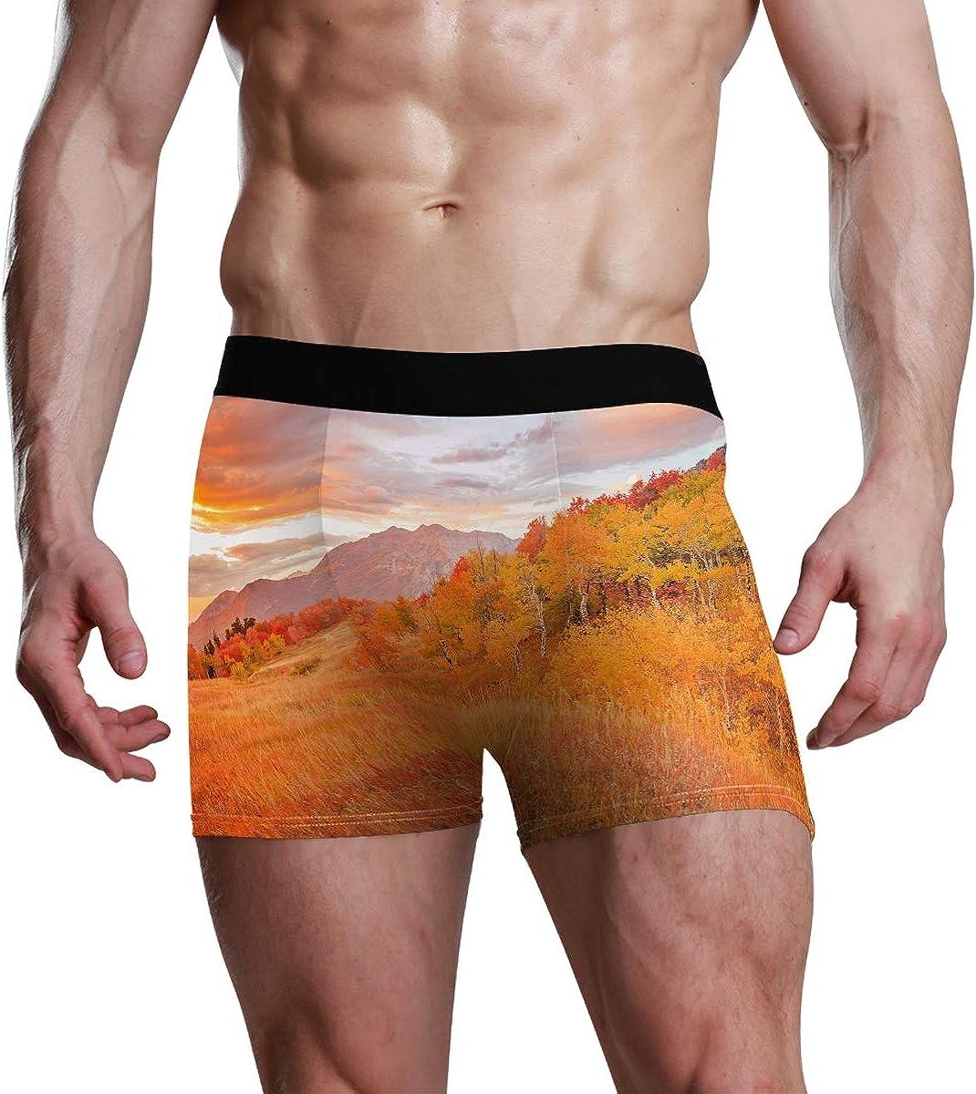 HangWang Mens Underwear Briefs Fall Forest Tree Autumn Breathable Long Boxer Briefs Underwear Boys