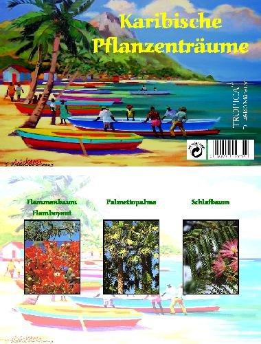 Mini-Gewächshaus - Karibische Pflanzenträume - Samen der Palmettopalme, Schlaf- und Flammenbaum