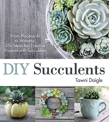 DIY Succulents: From Placecards to Wreaths, 35+ Ideas for Creative Projects with Succulents (English Edition)
