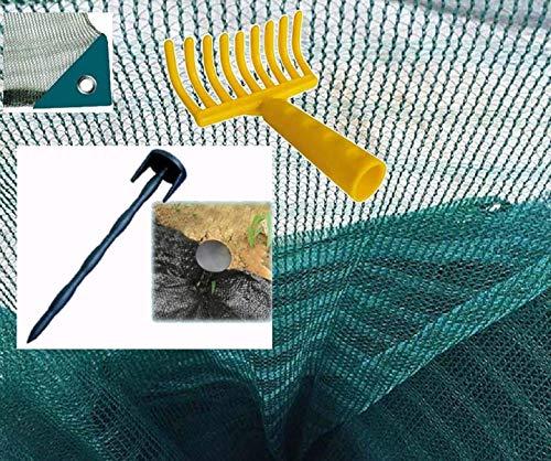Telo Rete Raccolta Olive antispina Pesante con Spacco Angolo Rinforzato Occhiello Omaggi rastrello 10 Chiodi fermatelo (mt 6x6)