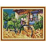 Lamdoo Kits de Punto de Cruz contado de 14 u,Patrón de Punto de Cruz Bricolaje Kit de Costura a Mano Kit de Bordado Impreso Conjunto decoración del hogar- Bicicleta Bici