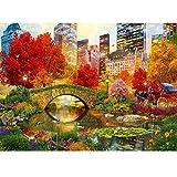 Bdhnmx 5D Diamond Painting Mosaic DIY Central Park NYC bordado paisaje Kits de punto de cruz decoración del hogar Diamante redondo 40X50Cm (15.5X19.5Inch)