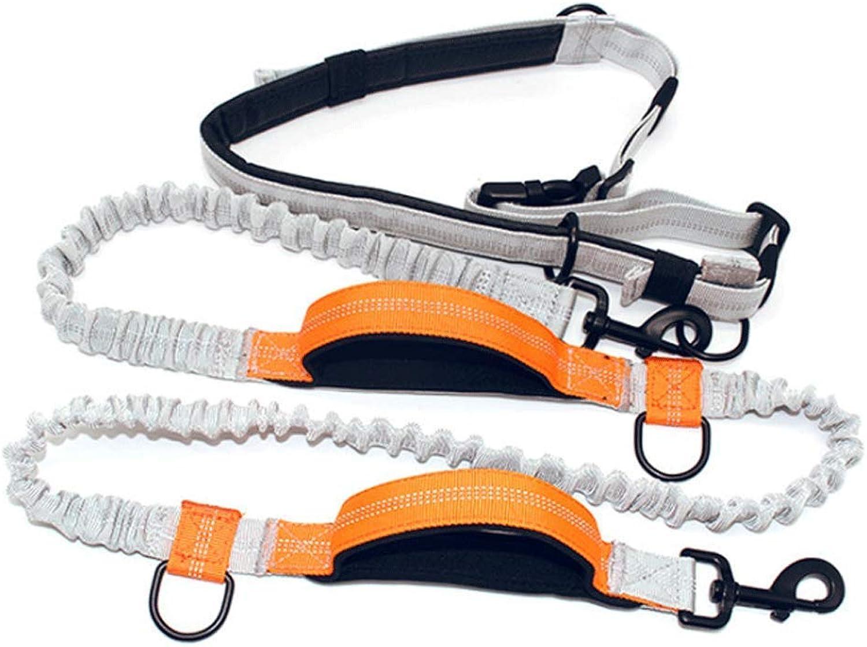 Dog Leash Double Stretch Dog Rope MultiFunction Running Rope Dog Suit (color   orange)